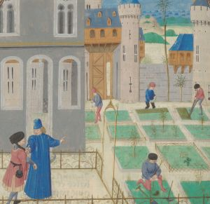 Urban Gardens in the Middle Ages. Illuminated Medieval Manuscript. Illumination.