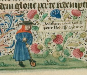 Gardening in the Middle Ages. Illuminated Medieval Manuscript. Illumination. Garderner. Gardening. Strawberry. Third Estate.